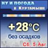Ну и погода в Куртамыше - Поминутный прогноз погоды